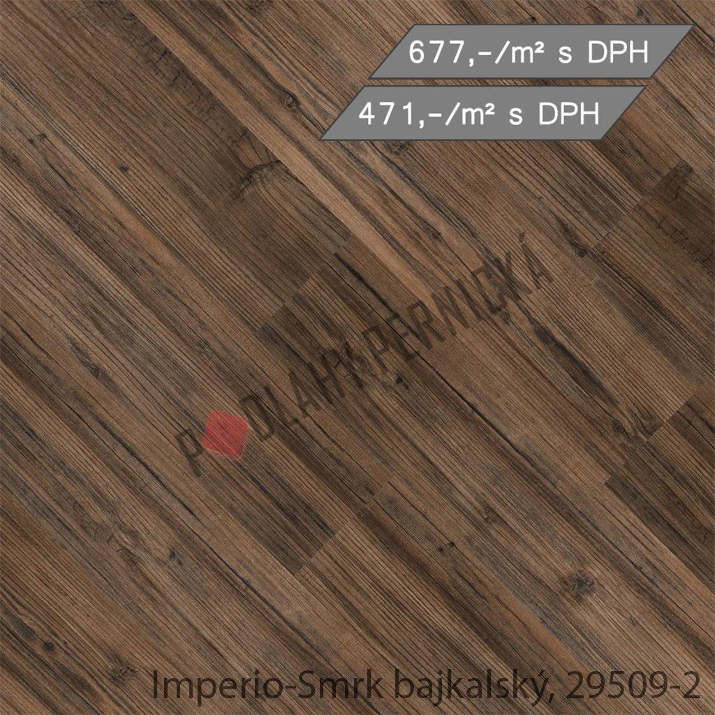 Imperio-Smrk bajkalský, 29509-2