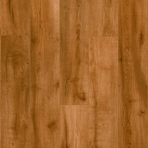 spc camelback oak