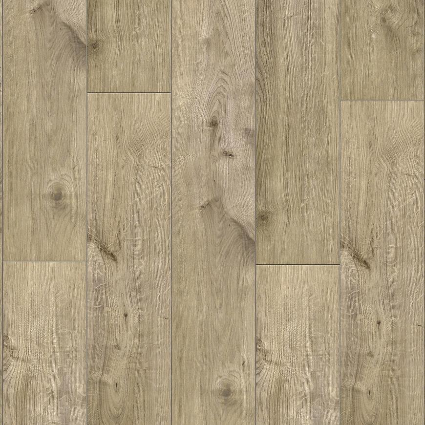 spc fraser oak